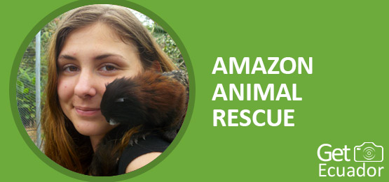 AMAZON-ANIMAL-RESCUE-volunteering-programs-page