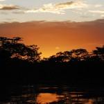 Amazon River Ecuador