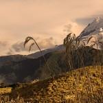 Get Ecuador - Cultural Exchange Los Andes