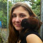 Volunteer monkey Rescue Program