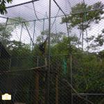 Animals Rescue Center Ecuador